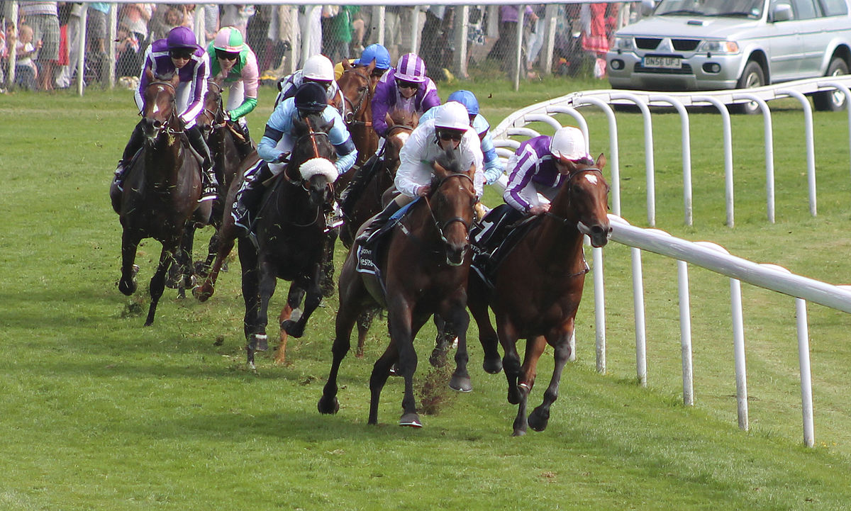 The Epsom Derby is one of the most popular horse races in the UK ... photo by CC user 9887585@N08 on Flickr